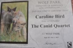 The Canid Quartet Certificate